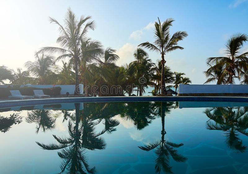 A view of a tropical hotel pool in a holiday resort. Palm trees and sea under blue sky with cloud royalty free stock photos