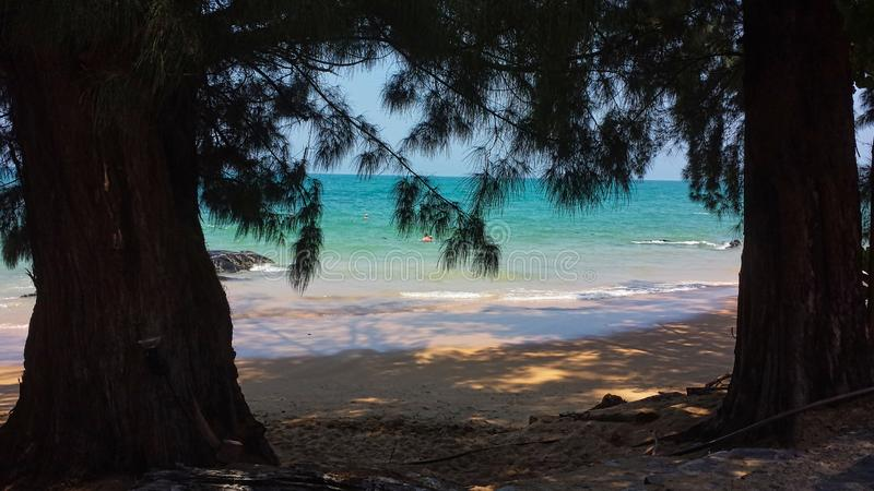 view trough trees on the beach royalty free stock images