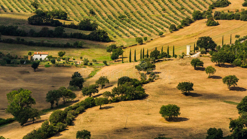 View of tuscan fields and hills in Maremma region in Italy royalty free stock photos