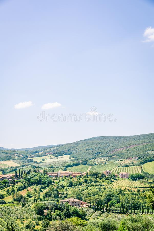 View into tuscany country with hills covered by olive trees and other plants royalty free stock image