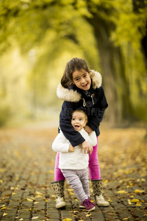 Two little girls at autumn park royalty free stock images