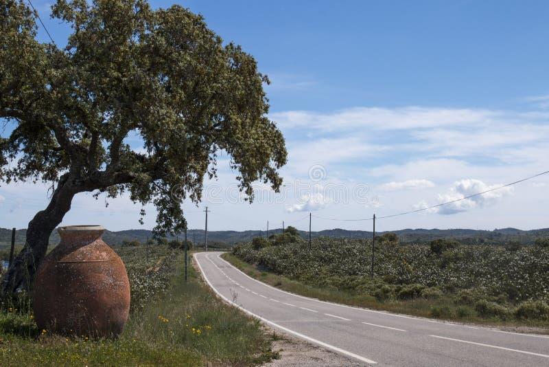 Rural landscape in Alentejo. View of a typical rural landscape in Alentejo royalty free stock photos