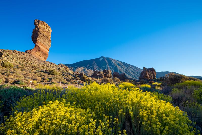 View of unique Roques de Garcia unique rock formation with famous Pico del Teide mountain volcano summit in the background on a su royalty free stock photo
