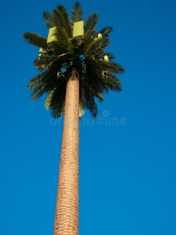 View Up Fake Palm tree cell phone tower stock images