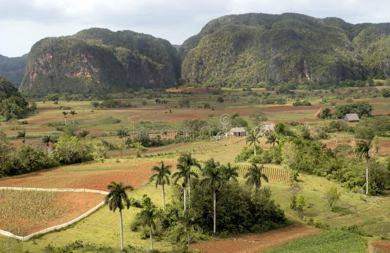 View at valle de vinales stock photo