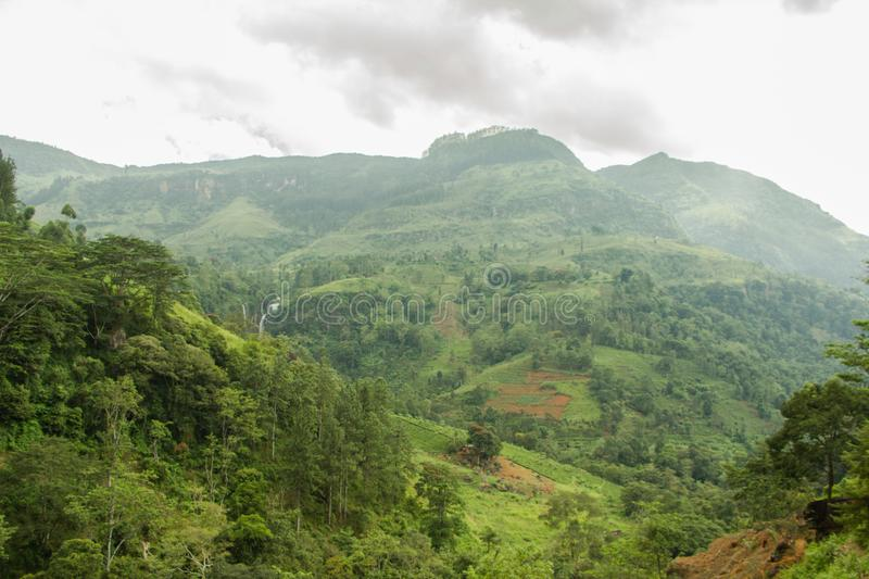 A view of the valley as seen from a road in Nuwara Eliya royalty free stock photography