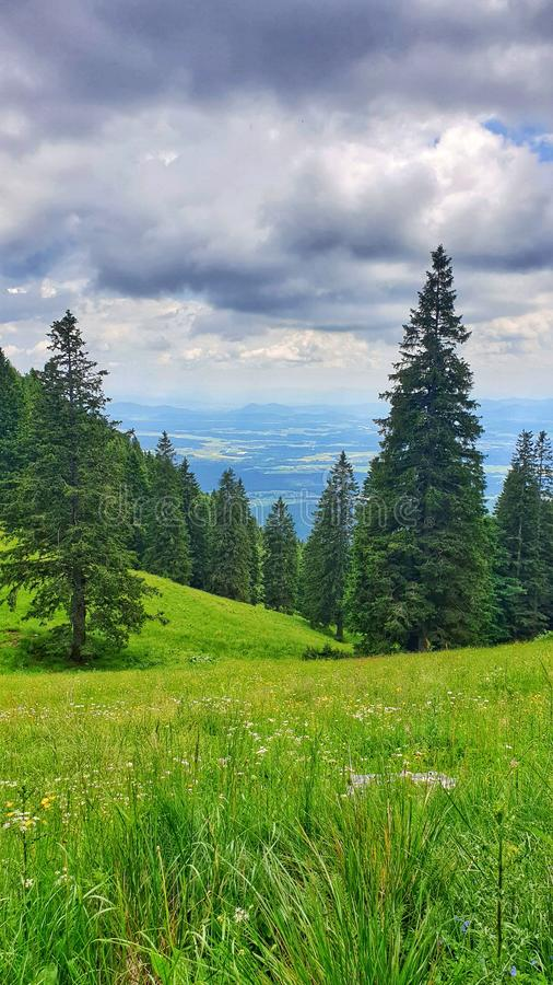 View of the valley from the sunny meadow royalty free stock photos