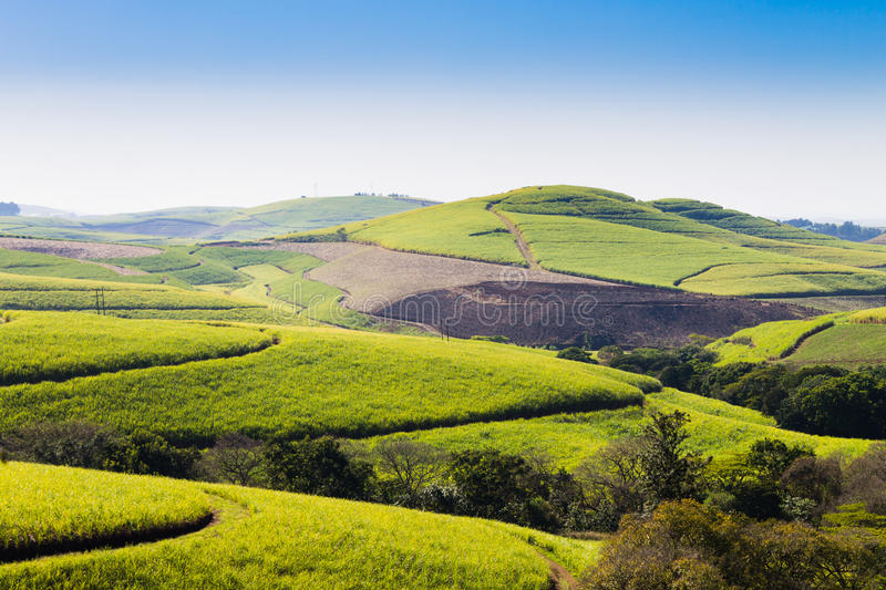 A view of the Valley of a Thousand hills near Durban, South Africa. Valley of a Thousand hills landscape. Green hills panorama. South African landmark near royalty free stock images