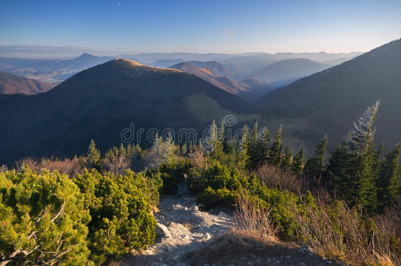 View from Velky Rozsutec mountain at Mala Fatra during autumn. With path, spruce trees and dwarf pine, Europe, Slovakia stock images