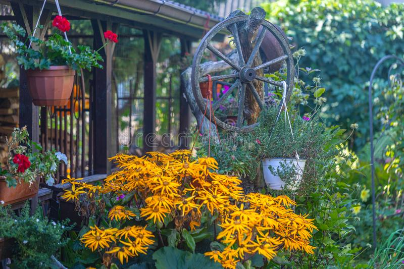 View of the veranda and the autumn garden full of flowers of different colors with the design of a wooden cartwheel and calm rural stock images