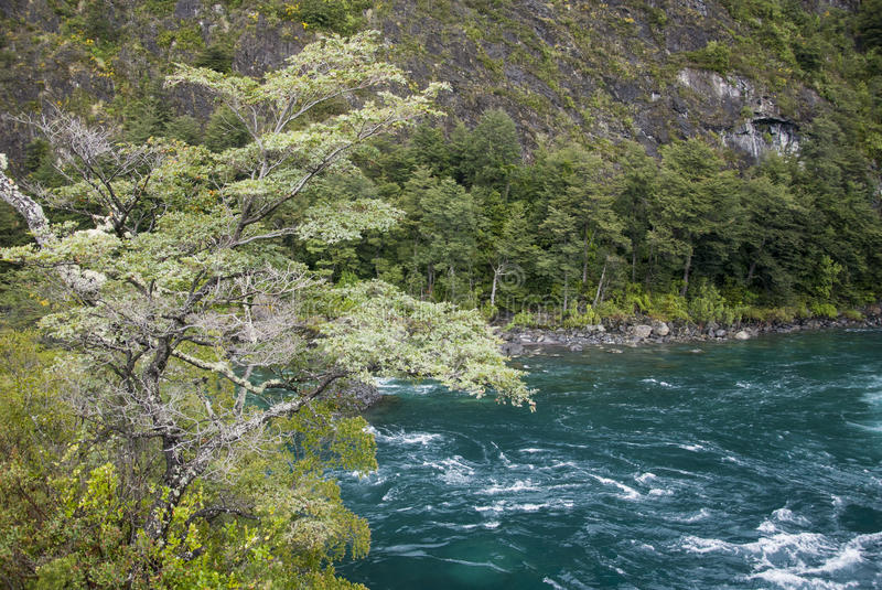 Download View Of Vicente Perez Rosales National Park - Chile Stock Photo - Image: 74421406
