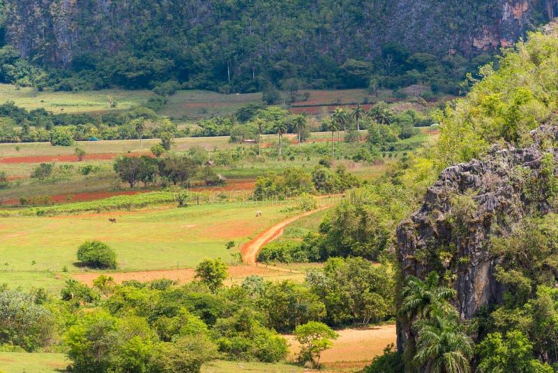 View Of The Vinales Valley, Pinar Del Rio, Cuba. Copy ...