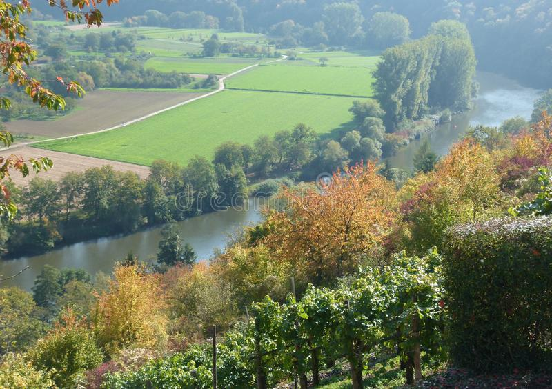 View from the vineyard summit on a river valley lined with trees stock photos