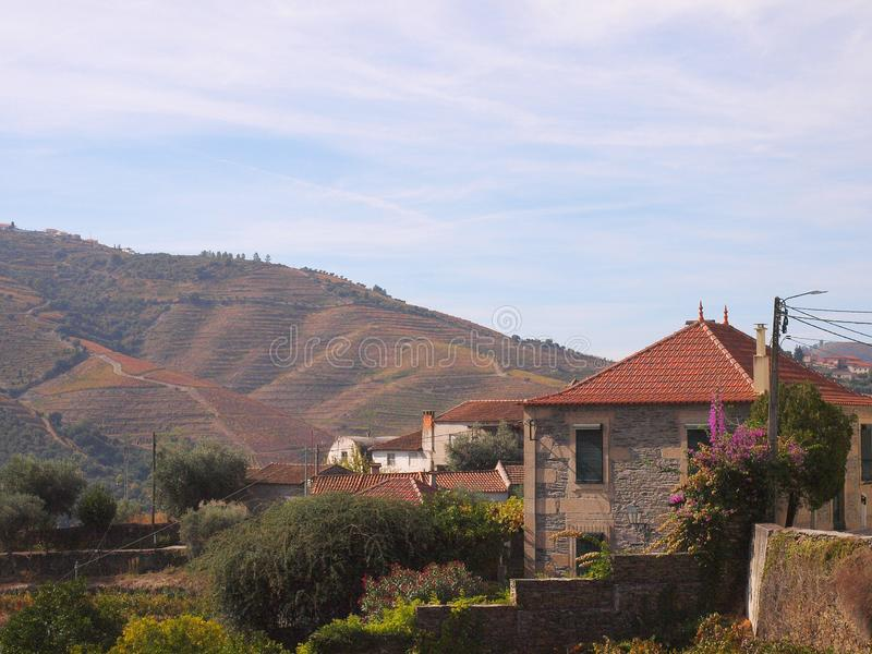 Douro river tipical village Portugal. View on vineyards meadows,wine caves and traditional houses stock photography