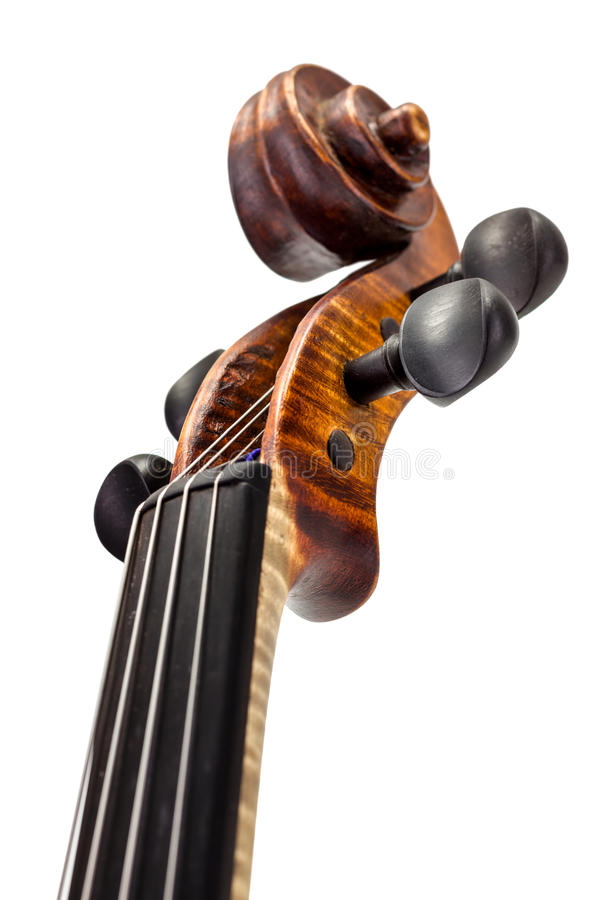 View of violin neck, pegbox and scroll royalty free stock photos