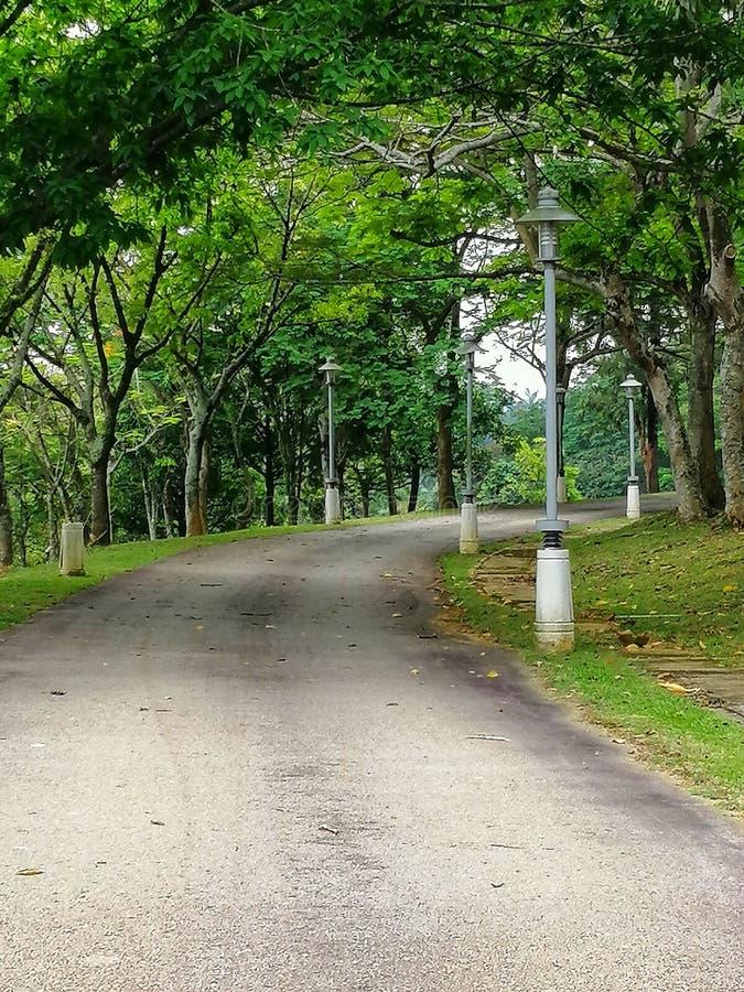 The view of walking path at recreational garden, Putrajaya Malaysia royalty free stock images