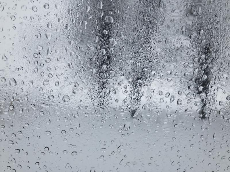 View through water dropson a weeping car window on threes stock photos