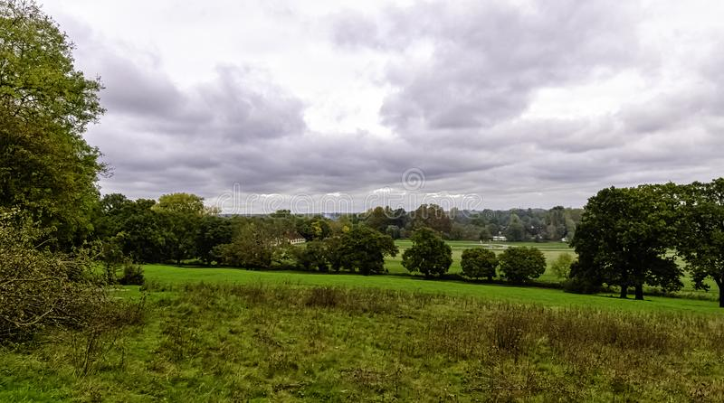 View of water-meadow alongside the River Thames in Runnymede, Surrey, UK stock image