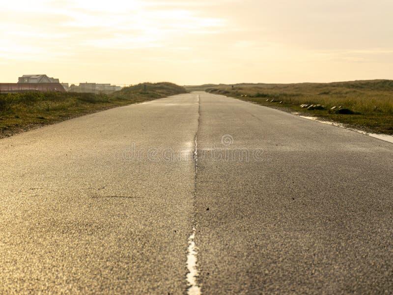 View of wet asphalt road. Sunlight stock images