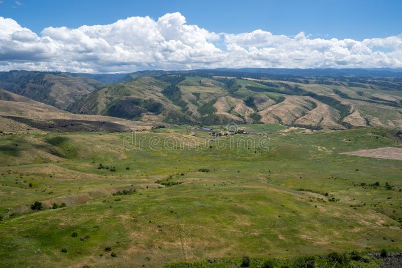 View of the White Bird Grade valley in Idaho in summer royalty free stock photos