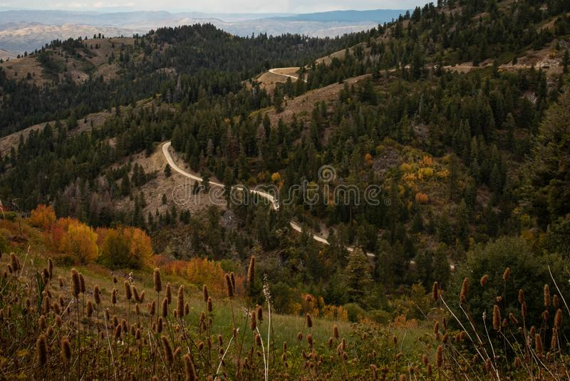 A view of a winding mountain road during the fall season royalty free stock image