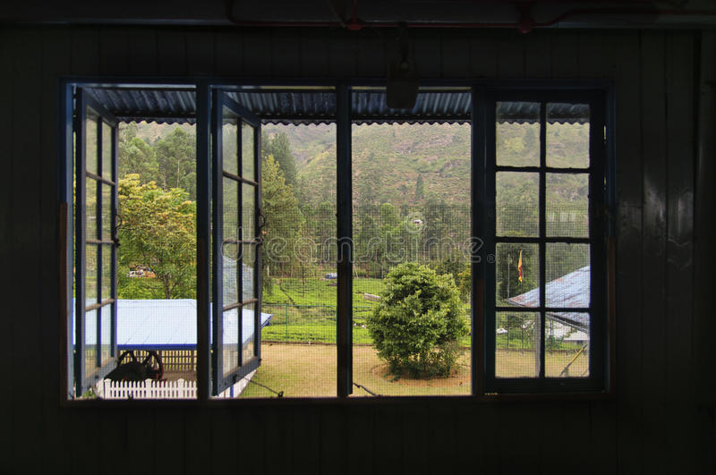 The view from the window of a tea factory stock photography