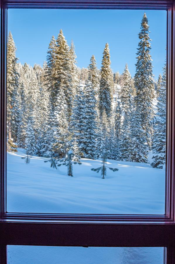 View from window to Sequoia National Park stock photo