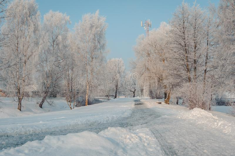 View of winter park with magnificent hoarfrost and cleared walking lanes. Latvia. Baltic stock image