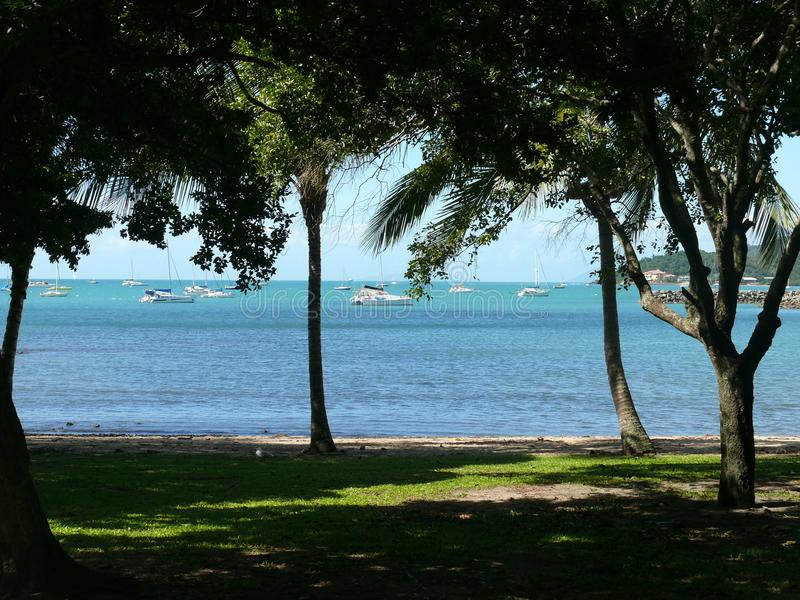 View from the wooded and shady shore into the bay with anchoring yachts. Australia East Coast stock images