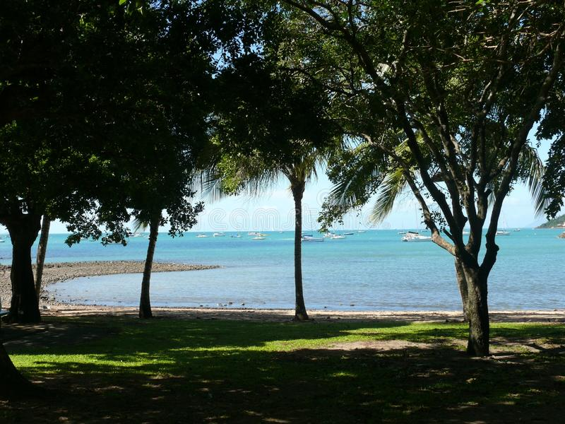 View from the wooded and shady shore to the bay with anchoring yachts. Australia East Coast stock photos