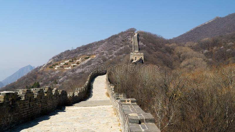 View of world heritage sight The Great Wall of China, section Mutianyu, original part, China royalty free stock photo