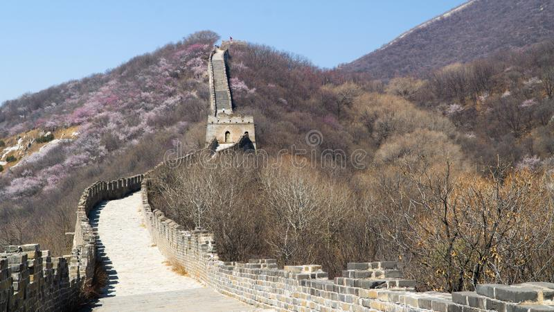 View of world heritage sight The Great Wall of China, section Mutianyu, original part, China stock photography