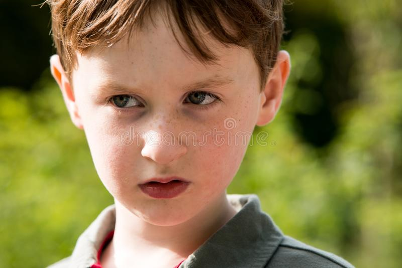 Young little boy portrait looking at something royalty free stock image