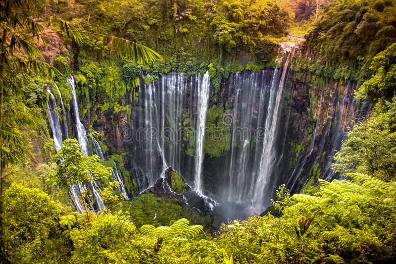 Viewpoint at the Tumpak Sewu Falls, on the island of Java, Indonesia. In the sunset, surrounded by vegetation and nature salvage royalty free stock images