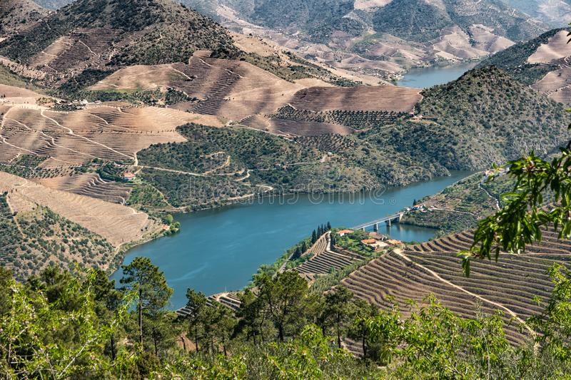 Viewpoint of Vargelas allows to see a vast landscape on the Douro and its man-made slopes. Douro Region, famous Port Wine Region, stock photography