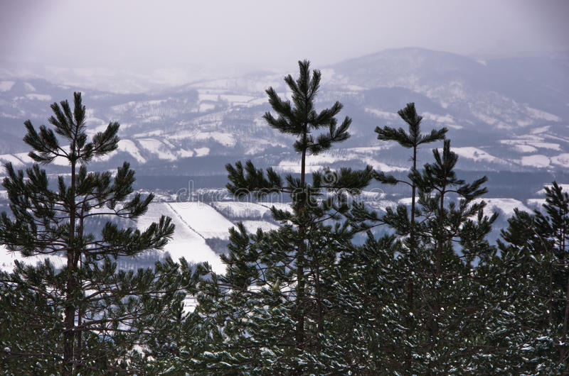 Viewpoint at winter landscape from mountain Kozomor royalty free stock image