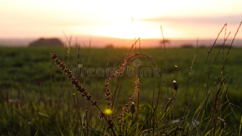 Sunset over farmland in the west of England. Views across South Cornwall as the nights begin to get longer and the air temperature lowers royalty free stock photography