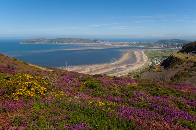 Download Views from Conwy Mountain stock photo. Image of mountain - 26151118