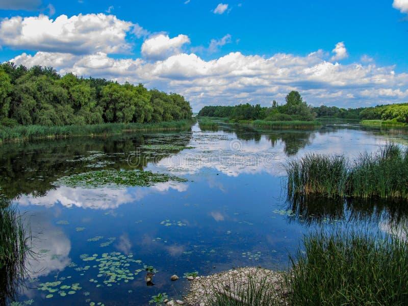 Views of Hungarian nature reserve Kis Balaton Little Balatonin the near from Lake Balaton. With blue Sky ,green Vegetation and blue Water stock image