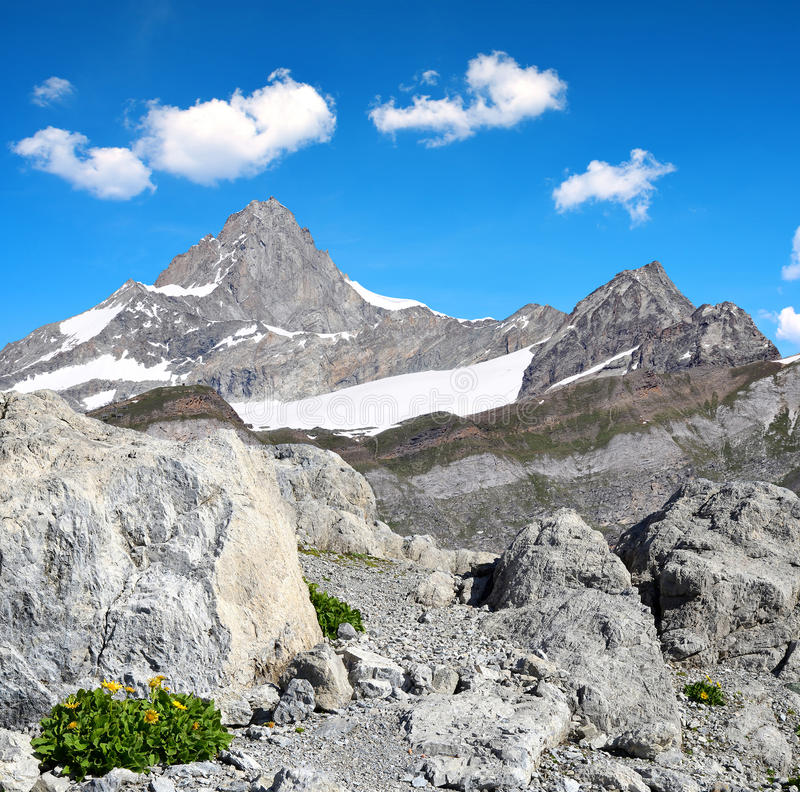 Views of the mountain Zinalrothorn, Switzerland royalty free stock photography