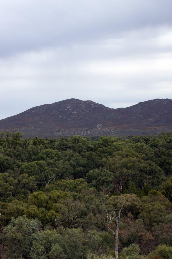 Views inside Wilpena Pound, SA, Australia. Views of rain shower inside Wilpena Pound, Flinders` Ranges, South Australia, Australia royalty free stock images