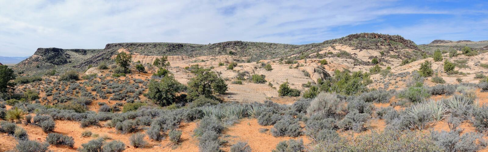 Views of sandstone and lava rock mountains and desert plants around the Red Cliffs National Conservation Area on the Yellow Knolls. Sweeping Views of sandstone royalty free stock images