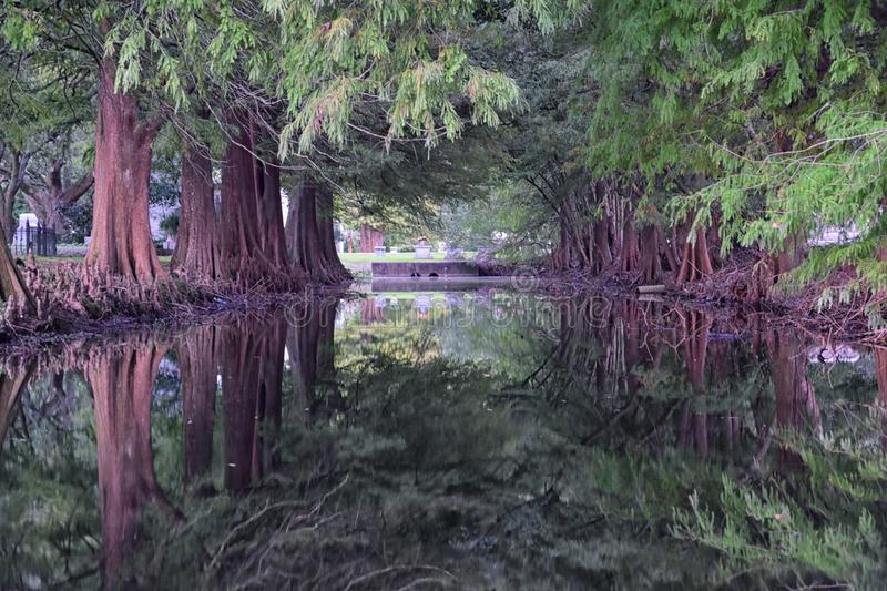 Views of trees and unique nature aspects surrounding New Orleans, including reflecting pools in cemeteries and the Garden District. In Louisiana, United States stock photography