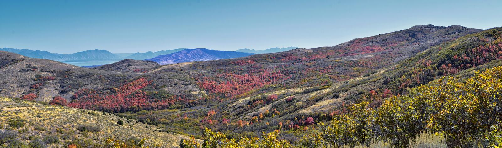 Views of Wasatch Front Rocky Mountains from the Oquirrh Mountains with fall leaves, Hiking in Yellow Fork trail Rose Canyon Utah stock image