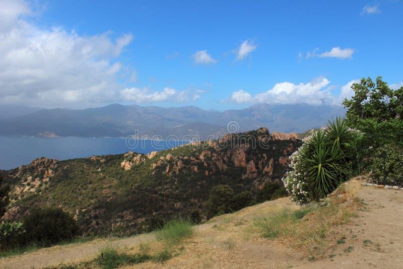 ViewSight der Lorbeere von Korsika Porto lizenzfreie stockbilder