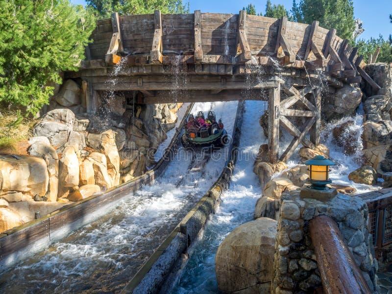 Vigas que disfrutan del funcionamiento del río del grisáceo, parque de la aventura de Disney California foto de archivo libre de regalías