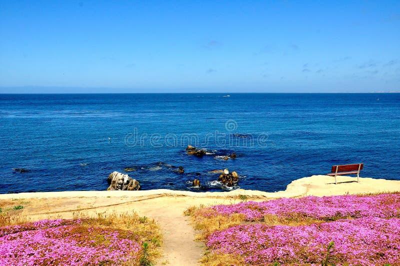 Vigia cênico no Oceano Pacífico em Califórnia imagem de stock royalty free