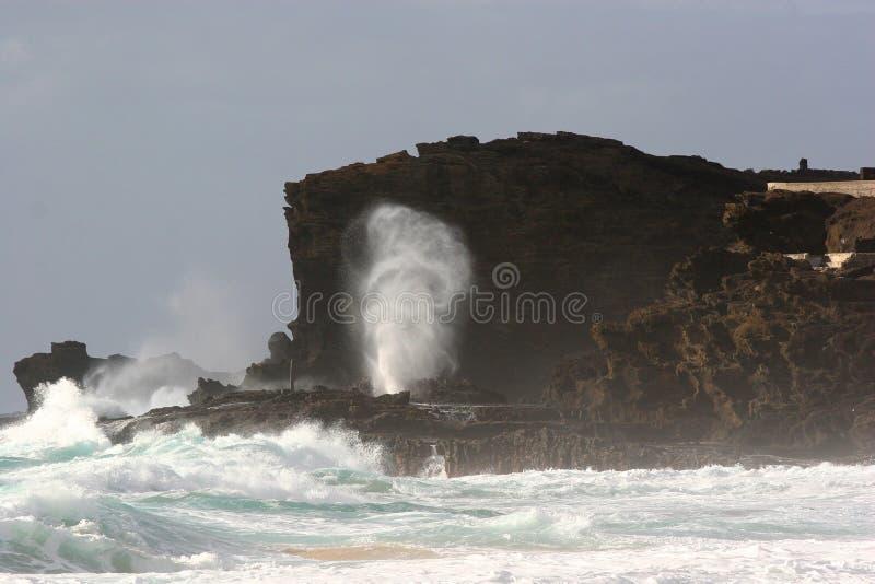Vigia da bolha de Halona na praia de Sandy fotografia de stock