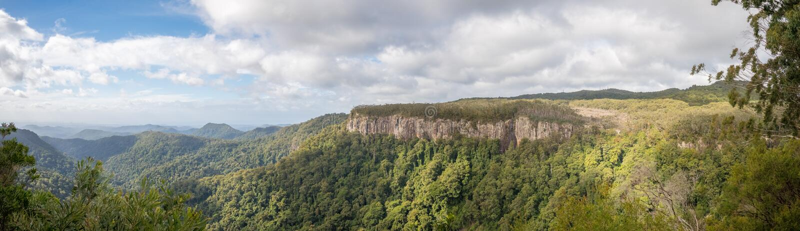 Vigia da garganta, parque nacional de Springbrook, Queensland, Austrália foto de stock royalty free