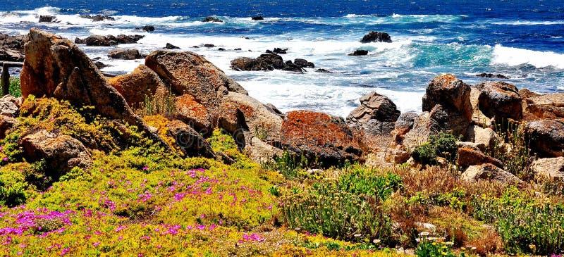 Vigia de Pebble Beach em Califórnia fotografia de stock